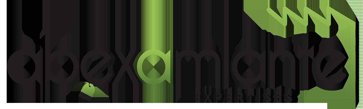 Abexamiante – Expert en Repérages et Diagnostics Amiante